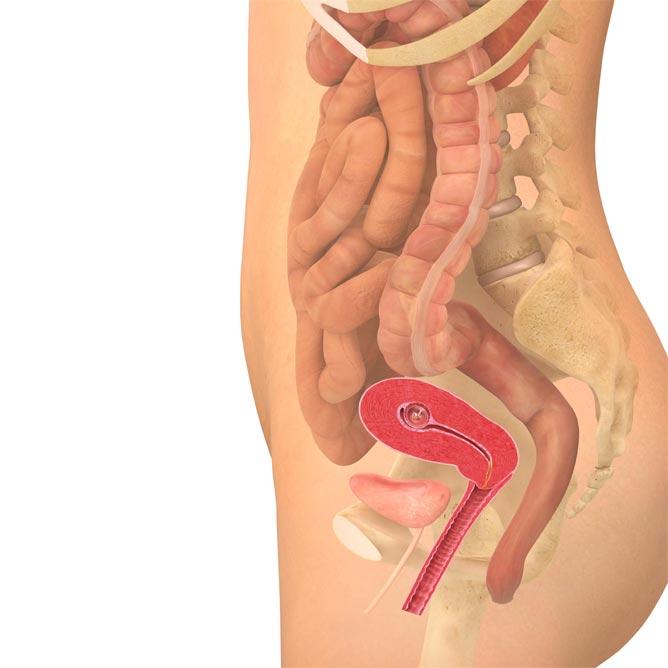 Stikker og strekker det i magen? Det er helt ufarlig og skyldes bare at livmoren vokser.