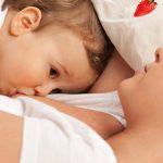 Gravid og ammende