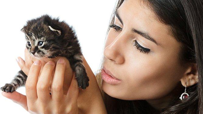 Er det greit å kose med en søt liten kattunge når man er gravid? Illustrasjonsfoto: Crestock