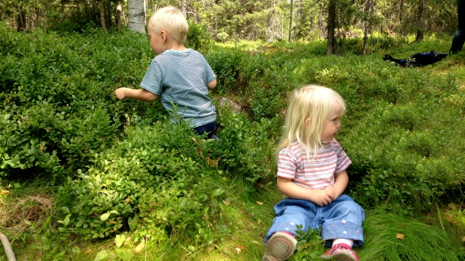 Sånn skal det være. Små barn i blåbærlyng. Foto: privat