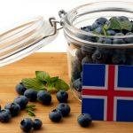 Islandske navn