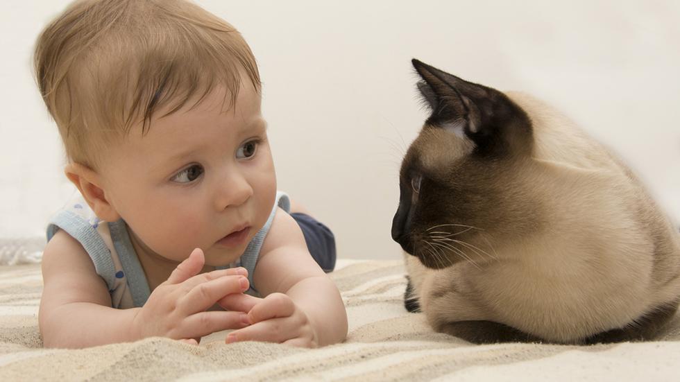 Heter du også Linus? Illustrasjonsfoto: Shutterstock