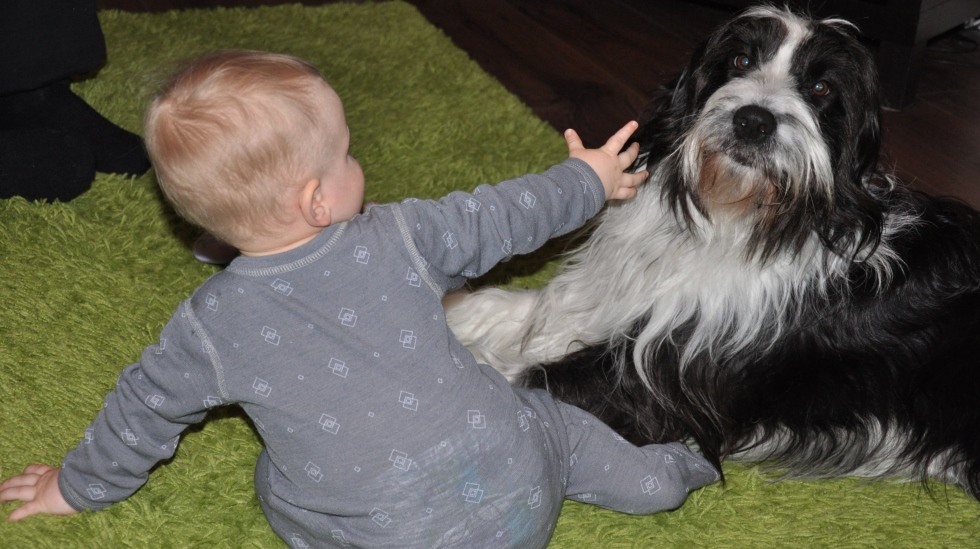 Minien og hunden Butters er bestevenner. Foto: privat