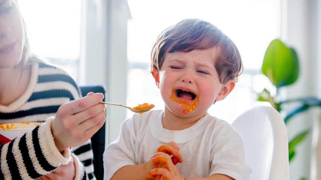 liker ikke maten