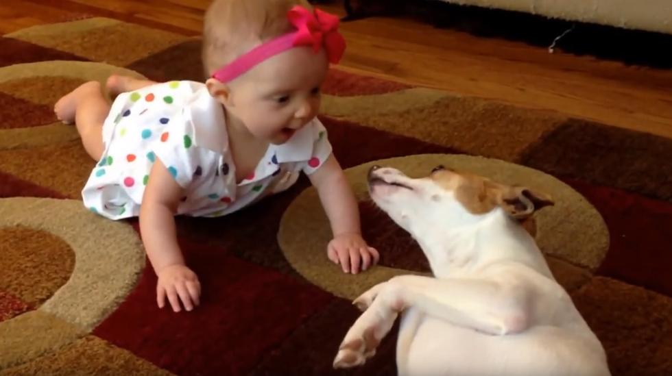 Hunden Buddy forstår den lille jenta. Foto: Skjermdump fra YouTube