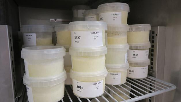Melk i melkebanken, men det trengs mye mer. Foto: Haukeland universitetssjukehus