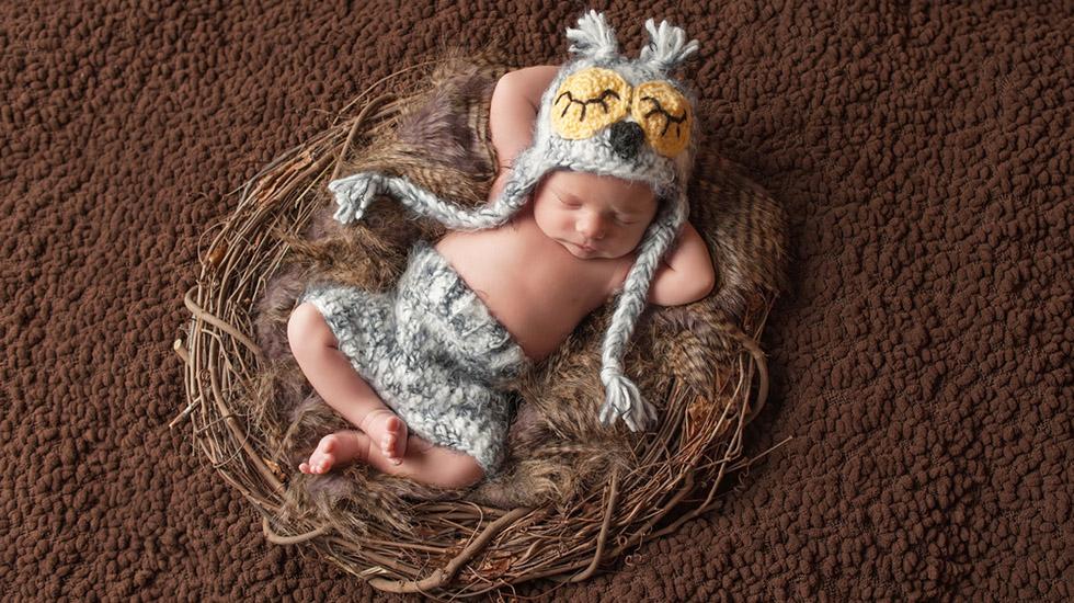 Det er ikke akkurat reder gravide bygger, men prinsippet er ganske likt for oss og dyrene – alt skal ligge best mulig til rette når babyen blir født. Illustrasjonsfoto: Shutterstock