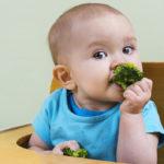 baby_brokkoli628-1