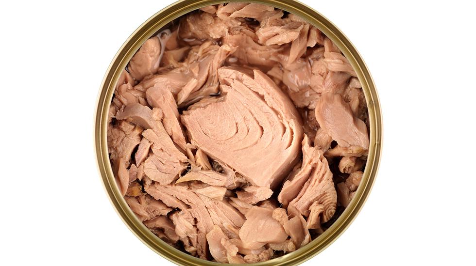 Gravide og ammende bør ikke spise fersk tunfisk, men boksvariantene er trygge. Illustrasjonsfoto: Shutterstock
