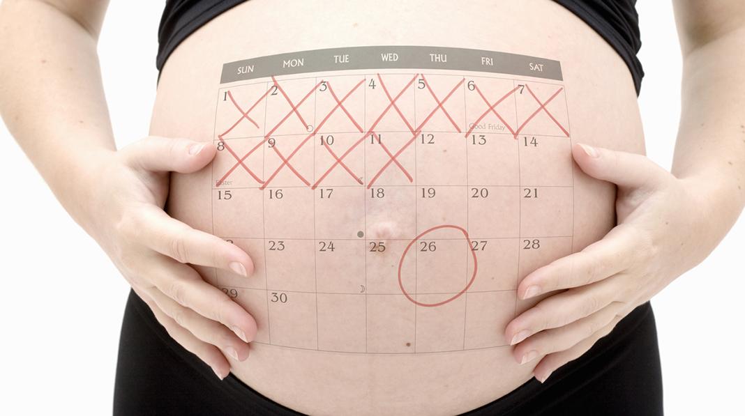 gravid terminsdato