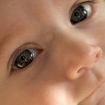 Closeup portrait of a baby's face