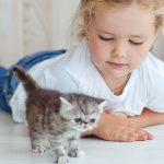 Ønsker barnet seg et kjæledyr?