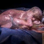 Baby_fostersekk_1068 Fotokonkurranse for frødselsfotografer