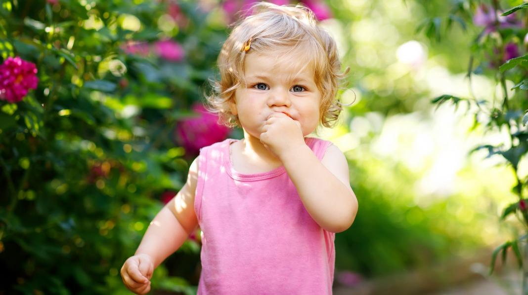 Rosmunde passer godt inn i trenden med å velge tyske navn til barn nå. Illustrasjonsfoto: iStock