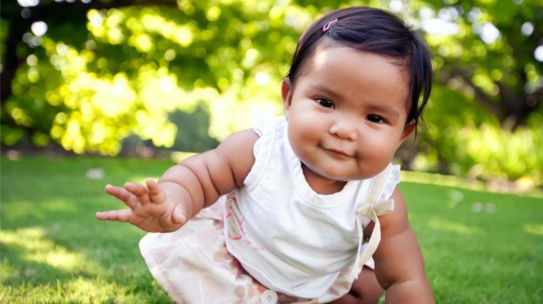 Arna er et naturnavn. Illustrasjonsfoto: iStock