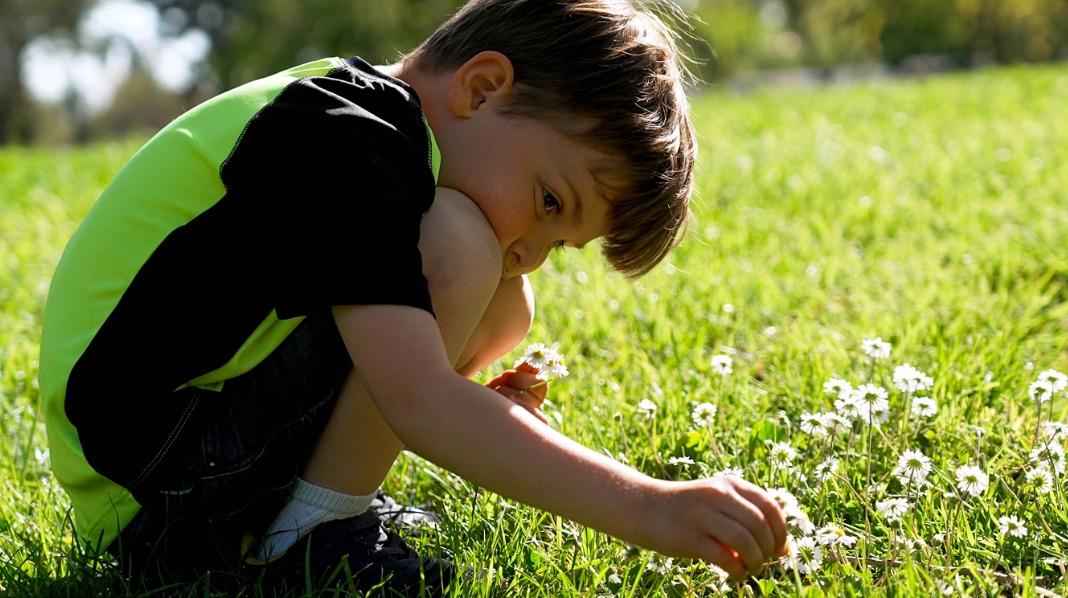 Mange barn elsker å plukke blomster. Men hva om øynene klør og nesa renner etterpå? Illustrasjonsfoto: iStock